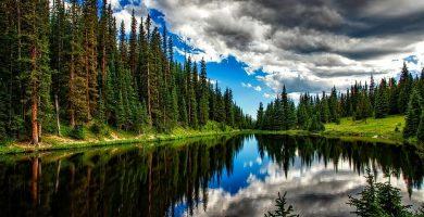 Agua de Lago vs Laguna