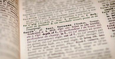 Texto con frases y oraciones diferentes