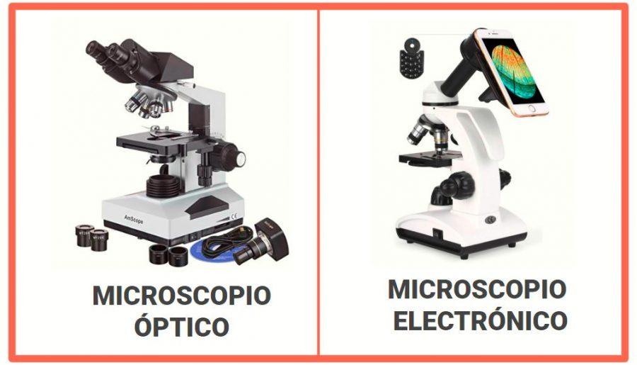 Diferencia entre un microscopio óptico y electrónico