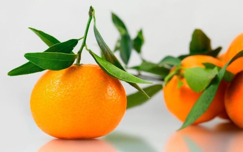 Mandarina vs clementina