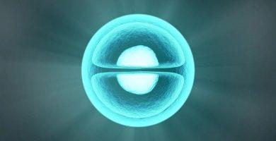 Molécula, diferencia entre cofactor y coenzima