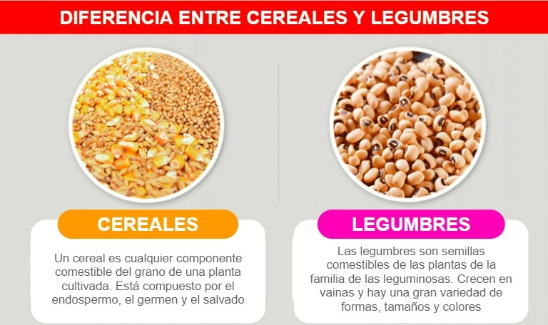 diferencia entre legumbres y cereales