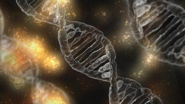 Diferencia entre genes y cromosomas
