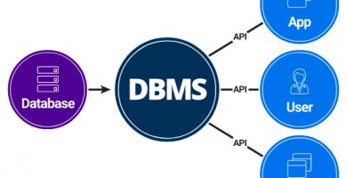 Modelo de datos DBMS